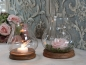 Windlicht Glas Chic Antique